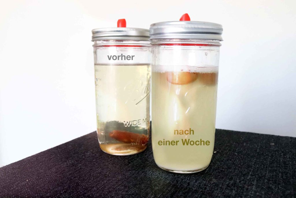 A glass with clear liquid and a date, another glass with cloudy liquid and foam formation: wild yeast